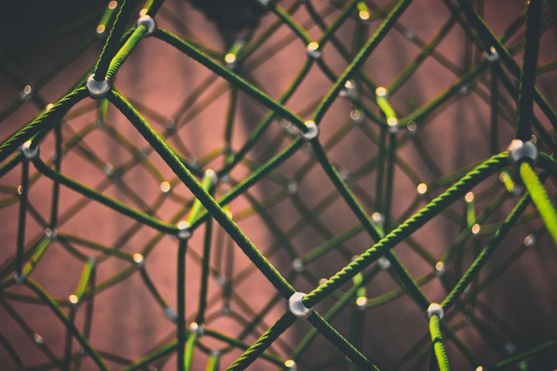 Netzwerk, Photo by Clint Adair on Unsplash